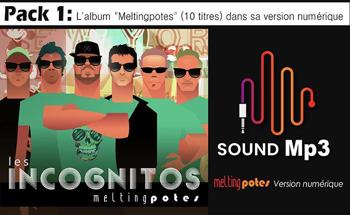 Acheter l'album des Incognitos : L'album Melting Potes (10 Titres) dans sa version numérique.